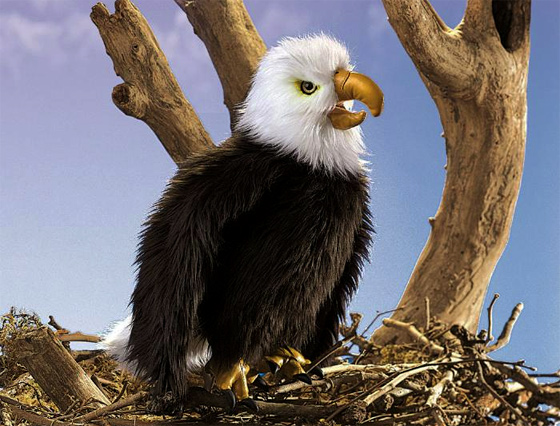 Perched Eagle puppet puppet by Folkmanis