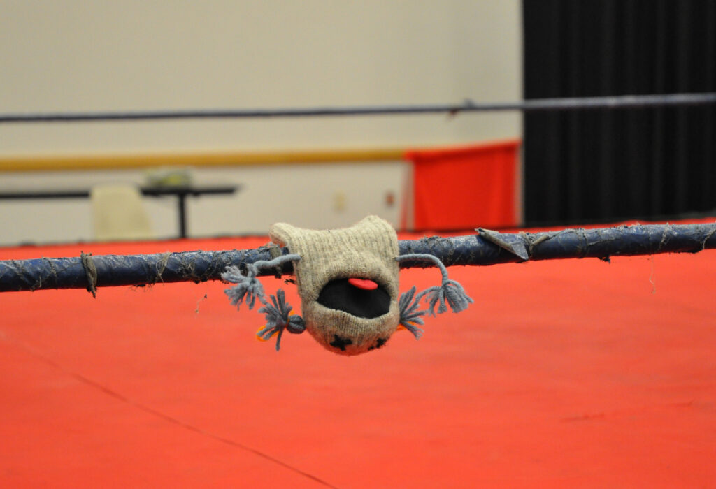 Puppet What What knocked out in a wrestling ring.