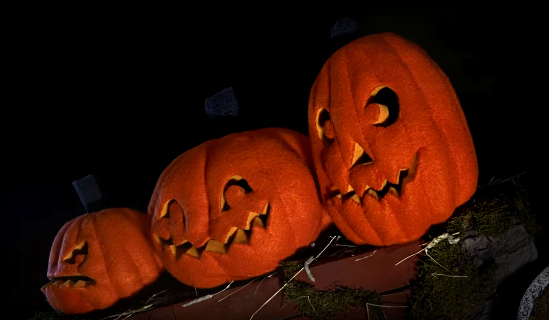 Faces of theNight: A Pumpkin Song